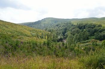 Bracklinn Falls - Scotland Highlands 5
