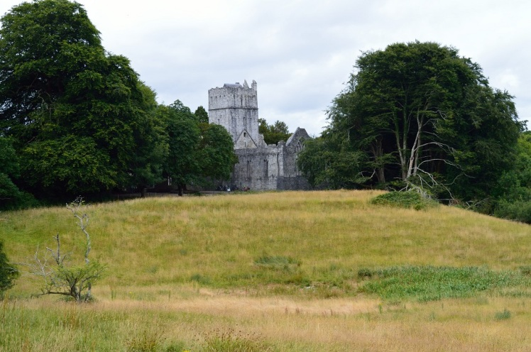 Muckross Abbey Kerry Ireland